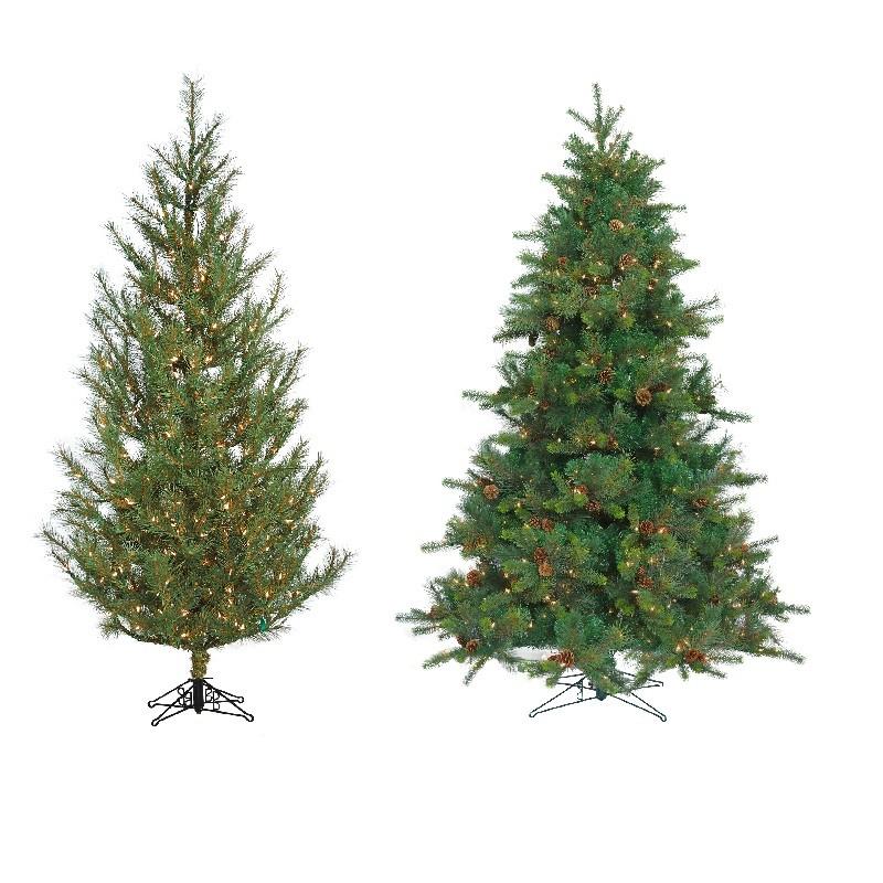 Redford Blue Spruce, Woodland Pine & Ponderosa Pine