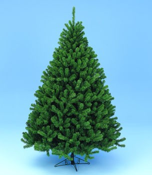 10' Wyoming Fir - Standard (Unlighted)