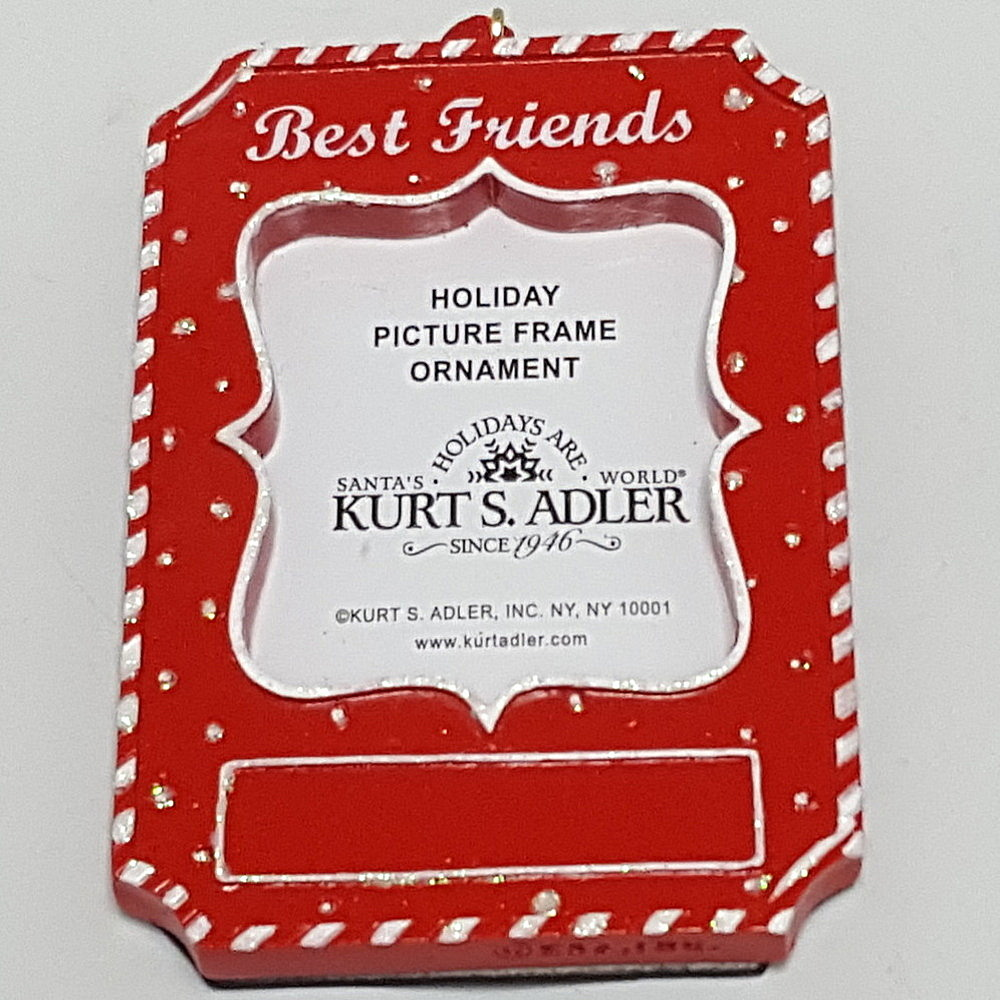 Best Friends Frame Ornament